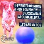 FB_IMG_1623225555867.jpg