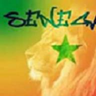 Senegal Lion